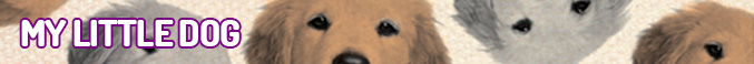 head-mylittledog